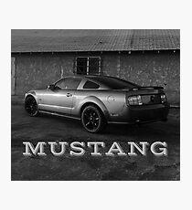 Mustang Bandito Photographic Print