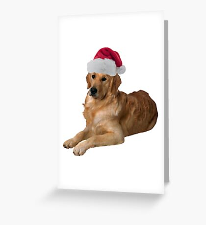 golden retriever santa claus merry christmas greeting card