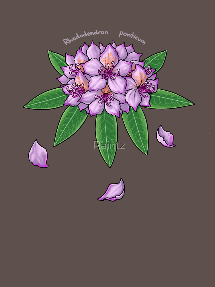 Rhododendron ponticum by Paintz