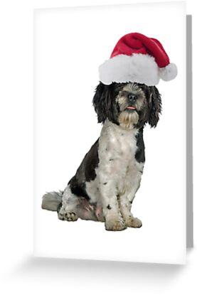 Havanese Dog Santa Claus Merry Christmas by CafePretzel