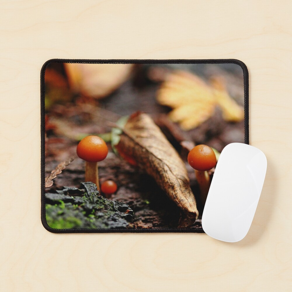 Little Life In The Forest Mouse Pad