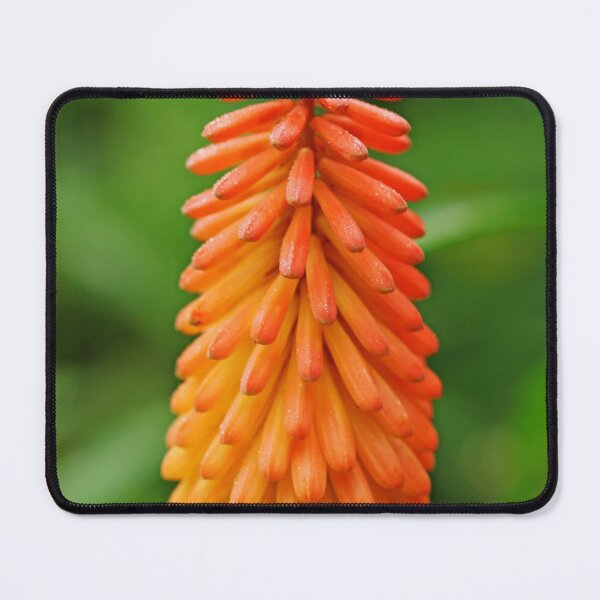 Torch Lily Mouse Pad