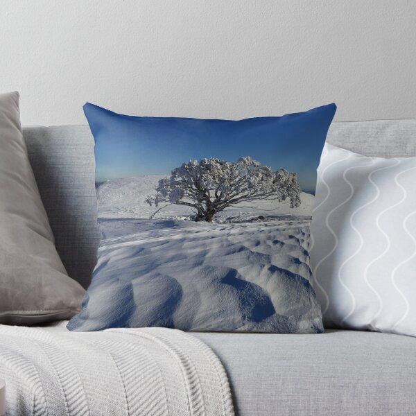 Endurance.  Mt Stirling  Throw Pillow