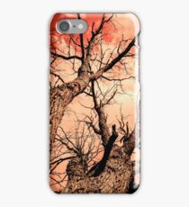The Reaching - Tree Abstract of Life and Sky iPhone Case/Skin