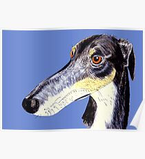 Quirky funny saluki greyhound lurcher Poster