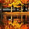 Fall Colors Reflected in Water
