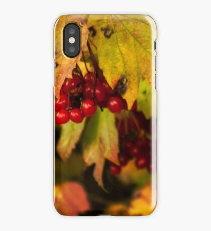 Memories of love that lasts iPhone Case/Skin