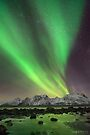 Norwegian Lights by Mieke Boynton