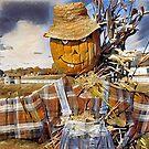 Country Pumpkin by shutterbug2010