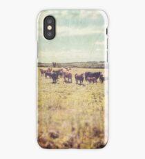 Irish cows iPhone Case/Skin