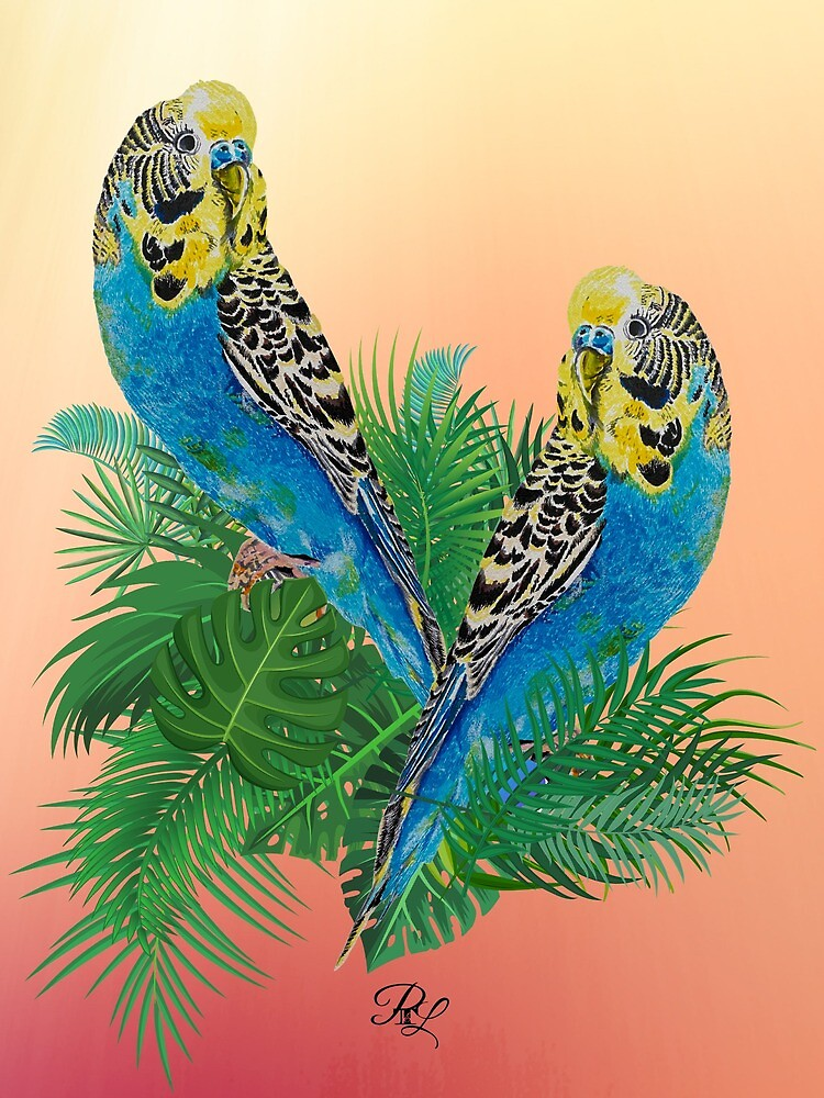 Budgies  by PTnL
