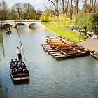 Punting along the River Cam by Ana Andres-Arroyo