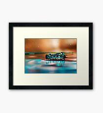 Splashy  Framed Print