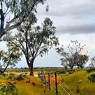Black Cockatoos and Rainbow by George Petrovsky