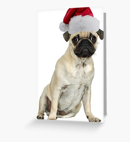 Pug Dog Santa Claus Merry Christmas Greeting Card