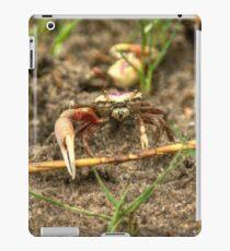 Shem Creek Crabs iPad Case/Skin