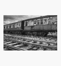 carriages Photographic Print