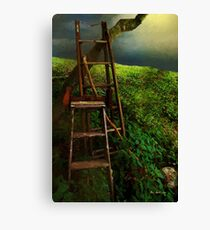 Forgotten in the Field Canvas Print