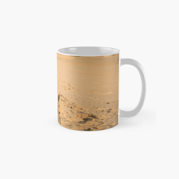 Poor Tired Camel Classic Mug