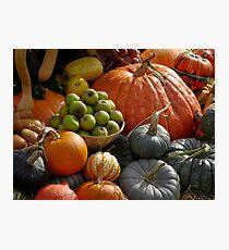 Harvest fruits Photographic Print