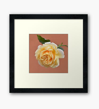 .....by any other name........ Framed Print