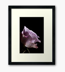 Almost perfect Framed Print