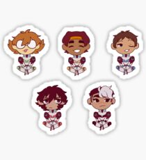 Voltron: Legendary Defender ~ Paladin Stickers Sticker