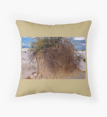 White Sands/New Mexico Throw Pillow