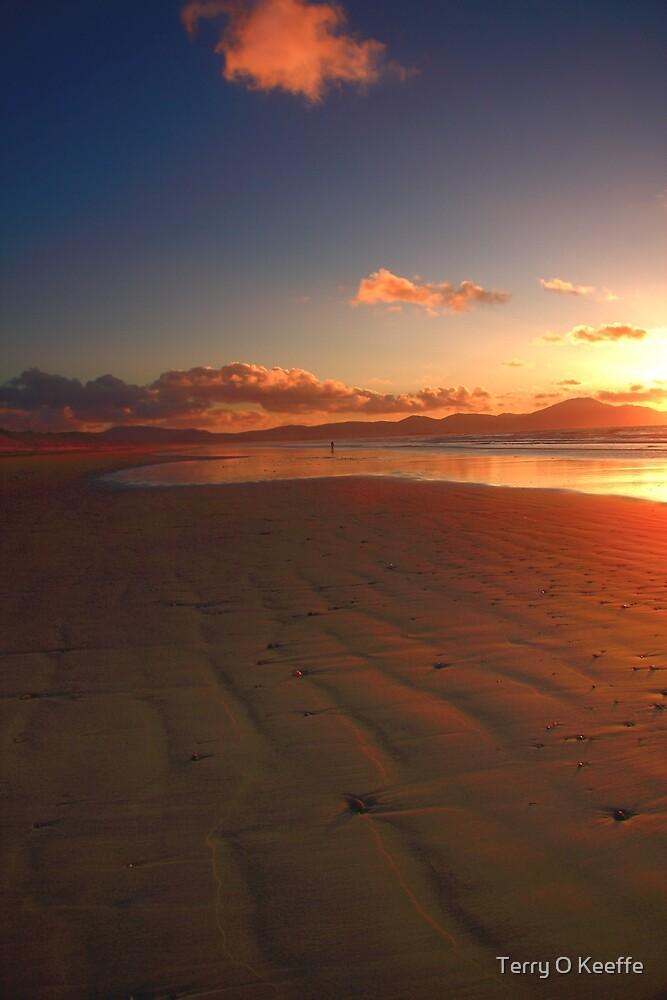 lifes a beach.. by Terry O Keeffe