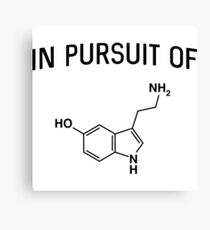 In pursuit of serotonin Canvas Print
