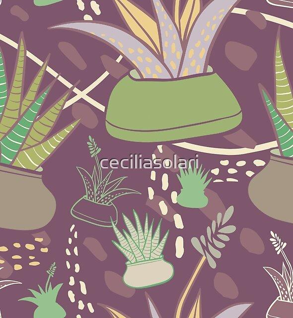 Potted Succulents by ceciliasolari