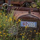 The Old 24 by Randy Turnbow