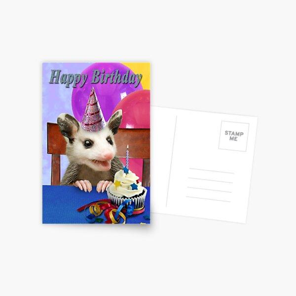 Birthday Opossum Postcard