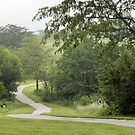 Lightly Foggy Morning Walk by Ben Waggoner