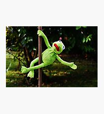 Kermit the frog on a pole Photographic Print