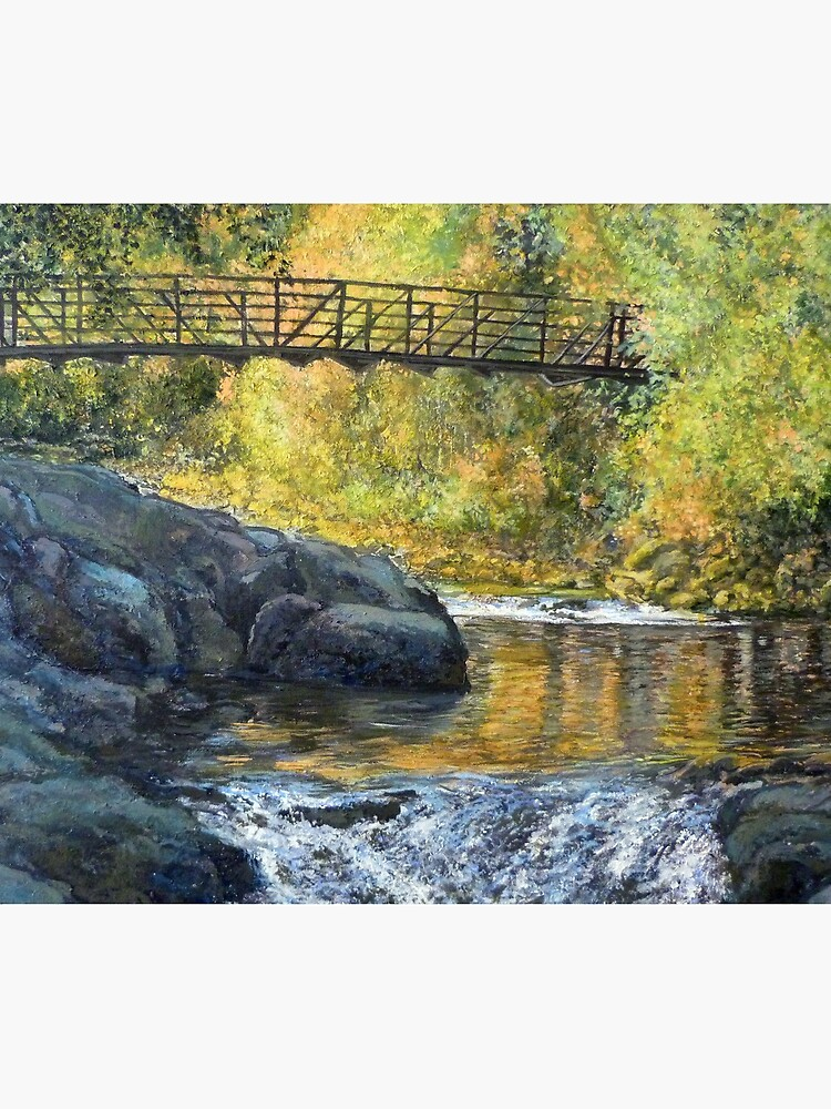 Boulder Creek - Late Afternoon by donnaroderick
