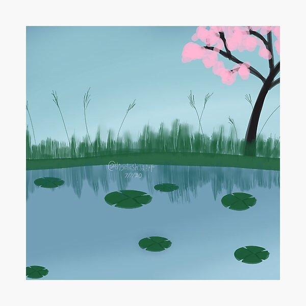 Pond with sakura tree Photographic Print