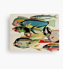 Fantastic Fish Tank Canvas Print