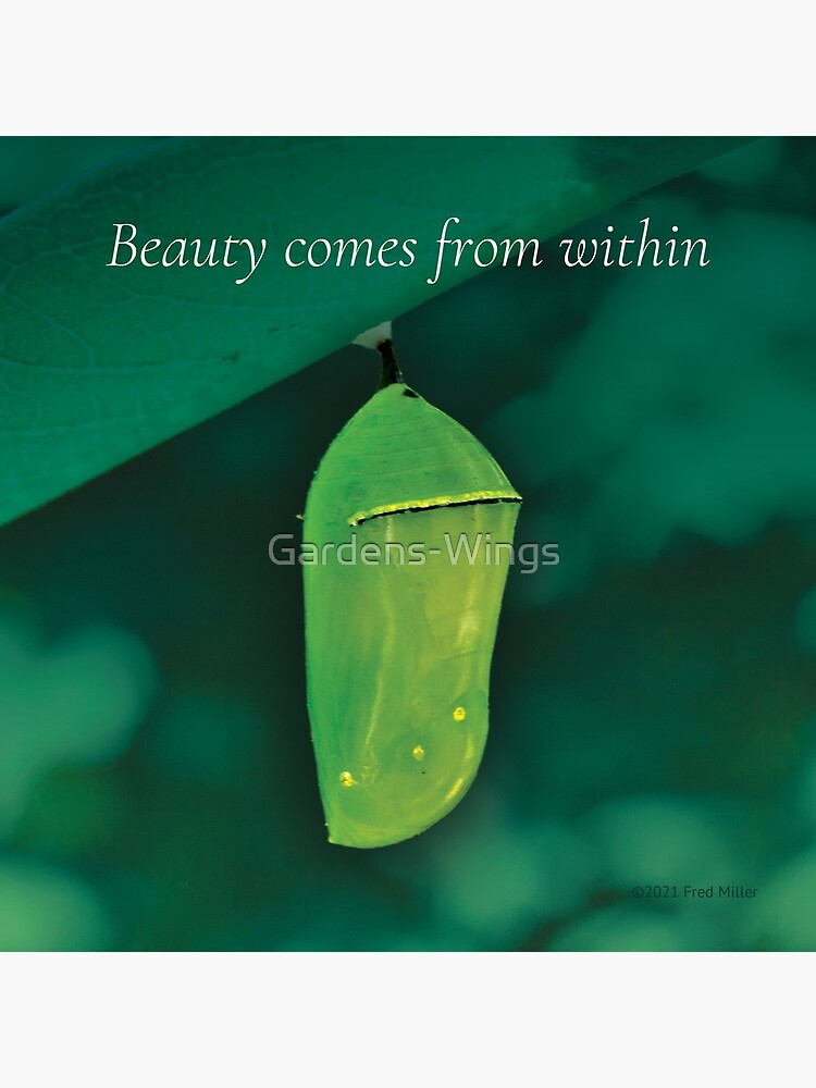 Beauty Comes From Within by Gardens-Wings