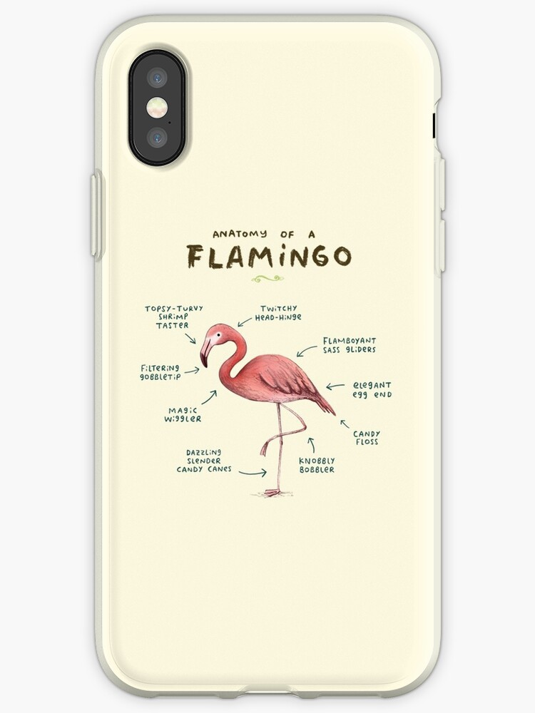 huge discount 4c2fa 43909 'Anatomy of a Flamingo' iPhone Case by Sophie Corrigan