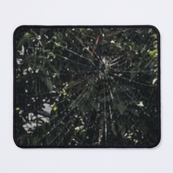 Nature Spider Web  inspired artwork Mouse Pad