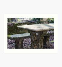 table and stone bench in the woods Art Print