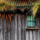 Old Cottage in Cygnet, Tasmania by Imi Koetz