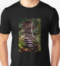 Old Wet Stone Steps T-Shirt