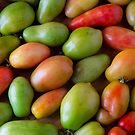 Colorful Roma Tomatoes by Bo Insogna