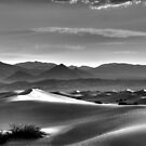 Mesquite Dunes by Mike Herdering