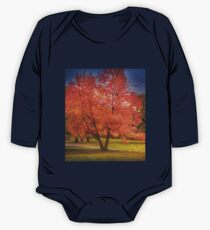 Autumn in New Hampshire One Piece - Long Sleeve