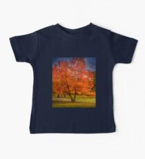 Autumn in New Hampshire Baby Tee