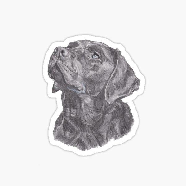 Classic Labrador Retriever Dog Profile Drawing Sticker