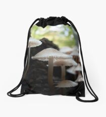 Tucked Away Drawstring Bag